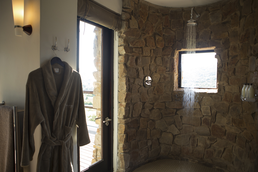 Hopewell standard suite shower