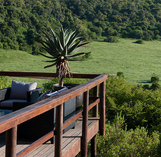 Hopewell-Private-Game-Reserve-Balcony